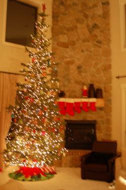 Christmas 2008 - tree night