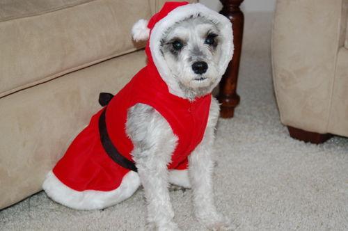 Mary - Christmas 2008