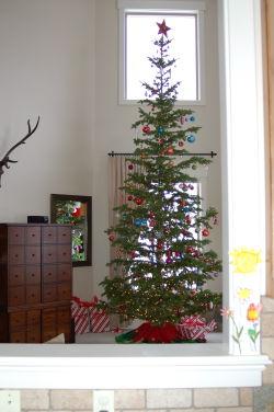 Christmas 2008 - tree day