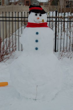 Three-armed snowman