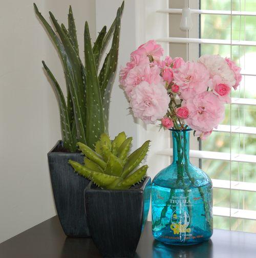 Roses in tequila bottle vase