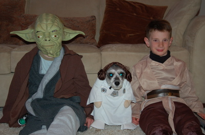 Parke [Yoda], Mary [Princess Leah], and Duke [Anakin Skywalker]